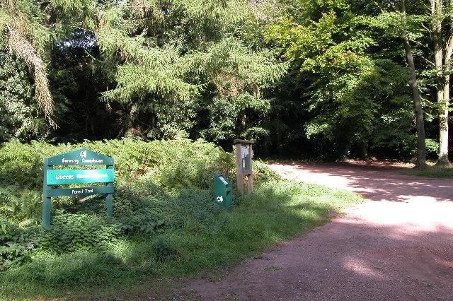 Queens Wood, Dymock