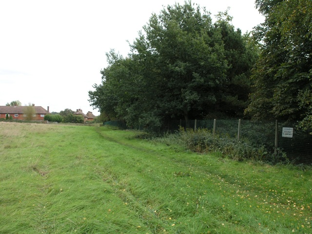 Field boundary near Godstone