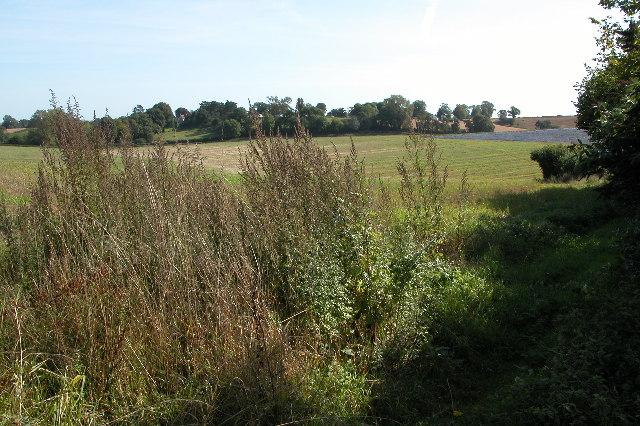 Farmland to the East of Kilcot