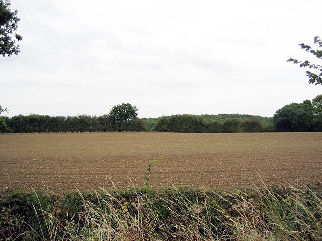 Fields near Handgate