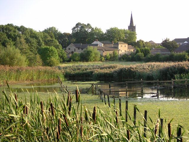 Wetland, Wath-upon-Dearne