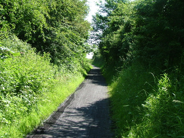 Aldcliffe Marsh Cutting, Lancaster