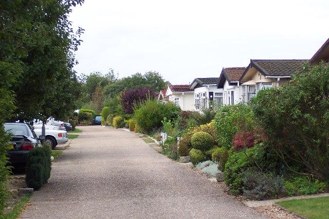 Pine Park, Clasford