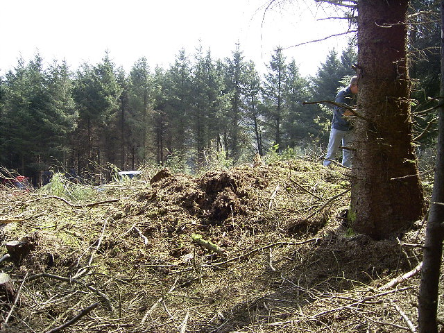 Cairn in Brookdale Plantation