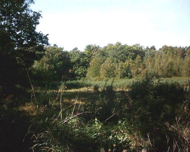 Gorrick Plantation