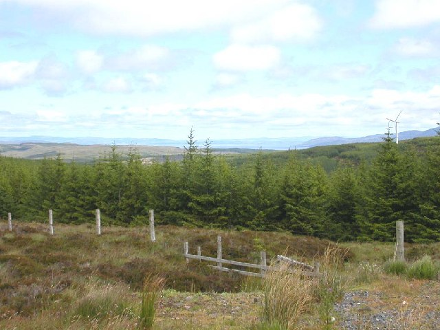 Forestry view and looking north up the peninsula of Kintyre