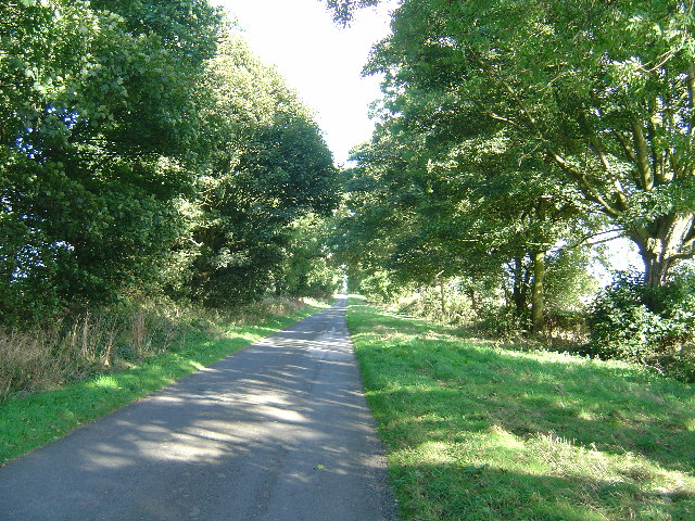 Country lane near Holme on the Wolds
