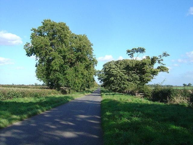 Country Lane Near Lockington