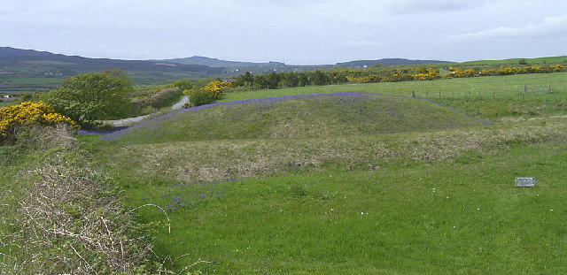 The Broogh Fort, Santon - bluebell time