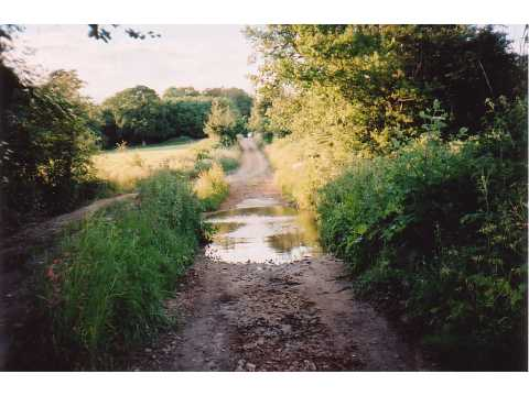 Ford through River Dorn