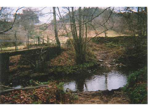 Ford, Devil's Water, Rawgreen