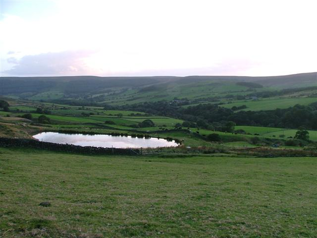 Newly Constructed Pond, Beck Hills