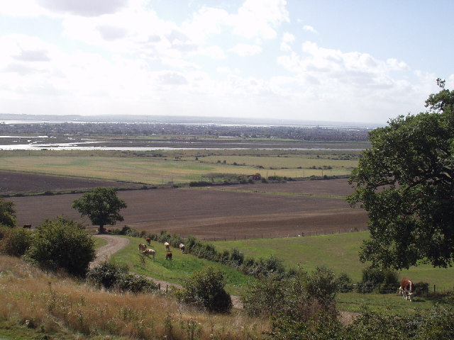 Hadleigh Marsh and the Thames Estuary