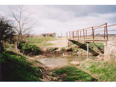 Wiza Beck, Wigton