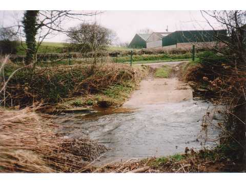 Ford, River Waver
