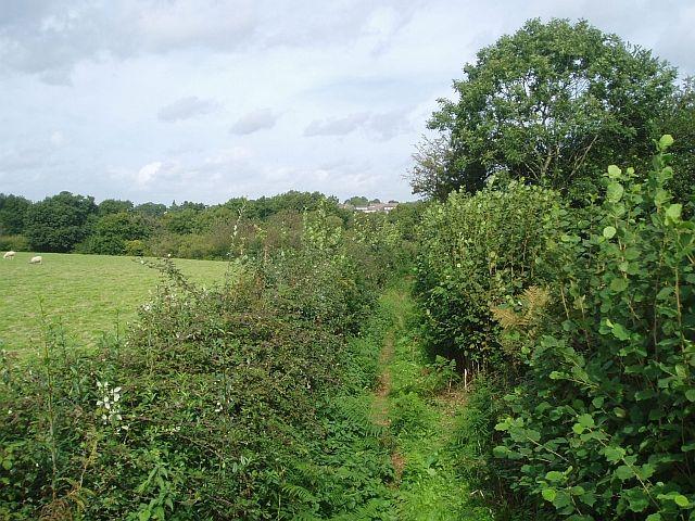 Footpath to Newick