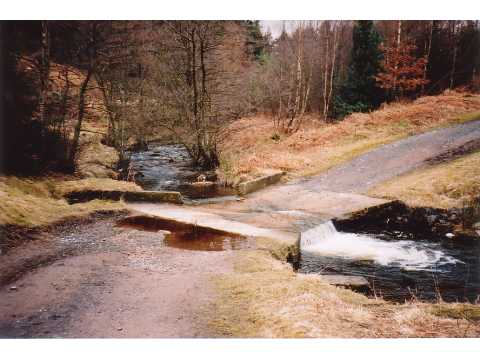 Ford, Hamsterley Forest