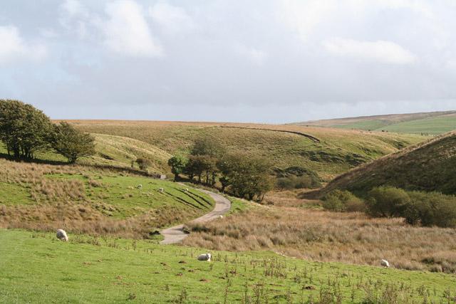 Exmoor: near Pinkery Farm