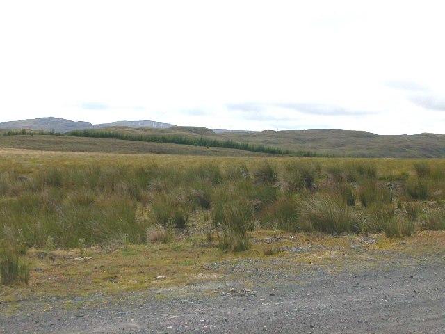 Moorland looking towards Beinn an Tuirc Windfarm, Kintyre.