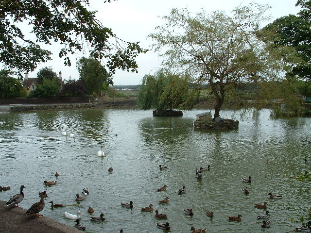 Flaxpits - The village pond at Winterbourne