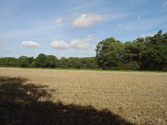 Mixed arable and woodland at Kilnwick