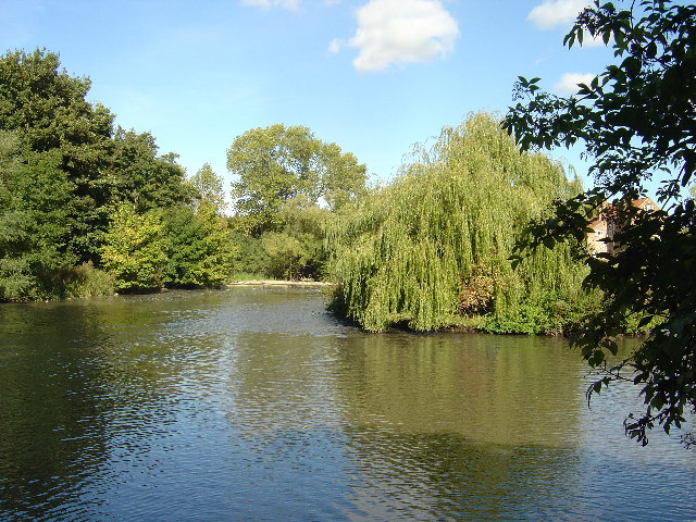 Fish pond at Cawkeld
