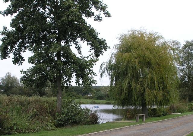 Mill Pond, near Hurst Green