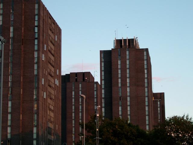 Wivenhoe Park (University of Essex Buildings)