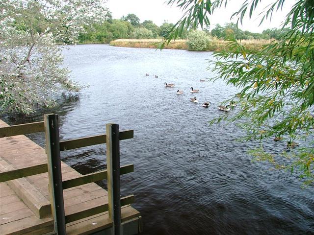 River Tees, Preston Park