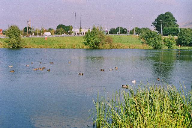 Pond nr Barrow, Whalley