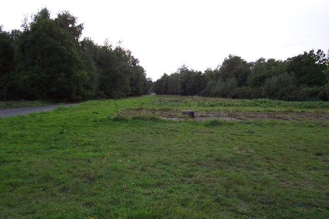 Cowshot Common