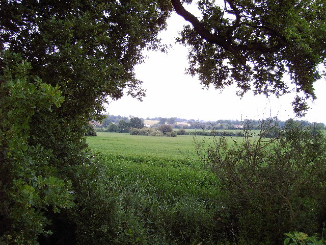 Broad Acres and Lower Farm Westerfield