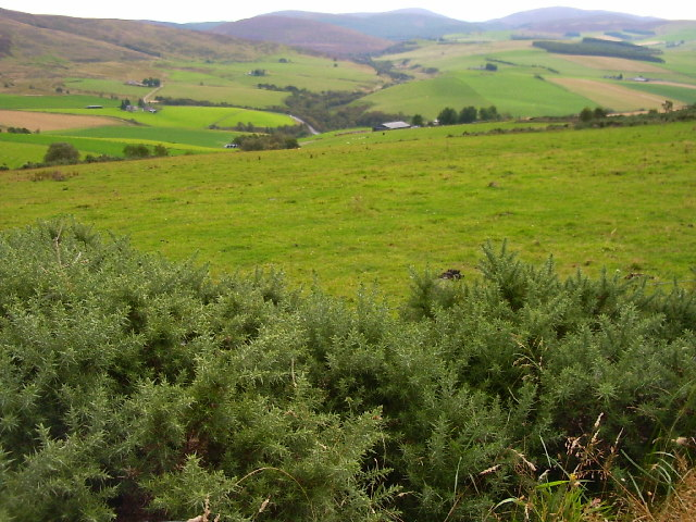 South East slopes of Carran Hill