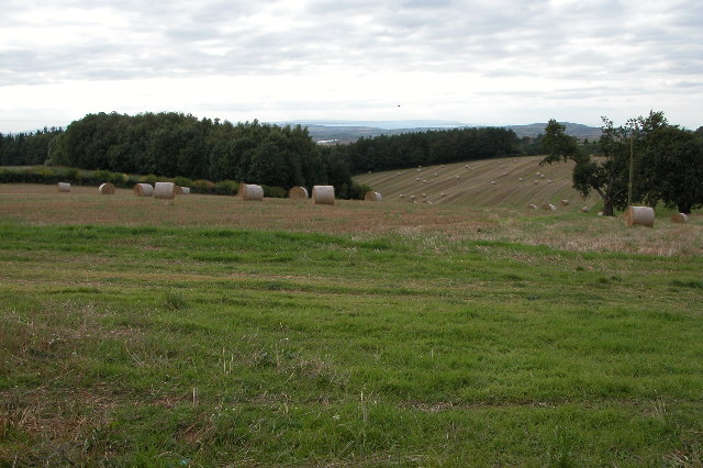 Straw bales near Oldgore Farm