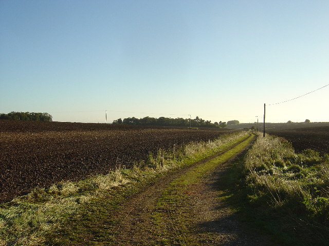 Farm track at Stevenson Wold