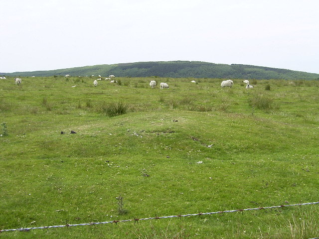 Quartz Mound on Rheast Buigh (Yellow Waste)