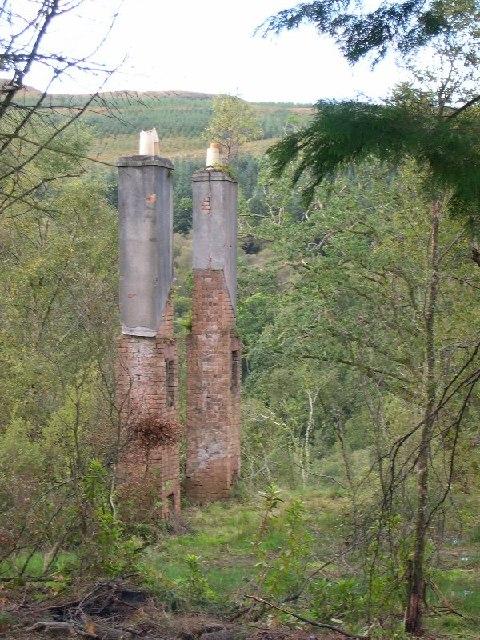 Chimneys in the woods, Claonaig, Kintyre.