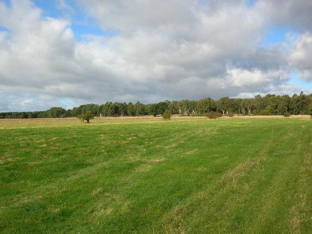 Heslington Tillmire