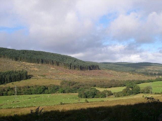 Meall Bhuide, Carradale, Kintyre