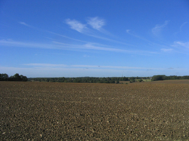 Open farmland near Wyatts Green, Essex