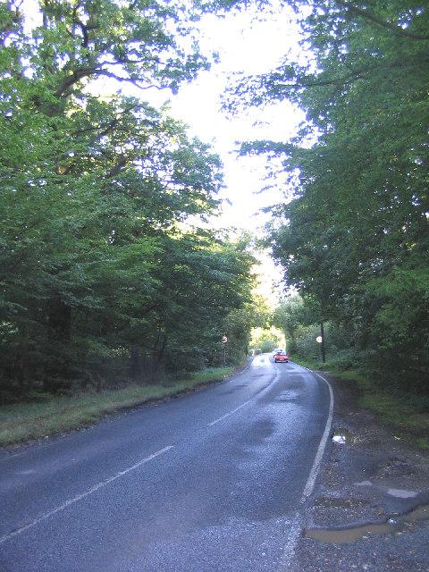 The Avenue, Warley, Essex