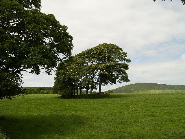 Cairn at The Rhyne near Baldwin