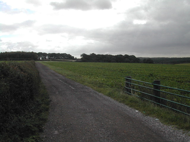 Two Oaks Farm