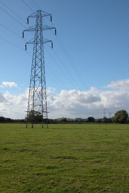 Pylons crossing meadows near The Leigh