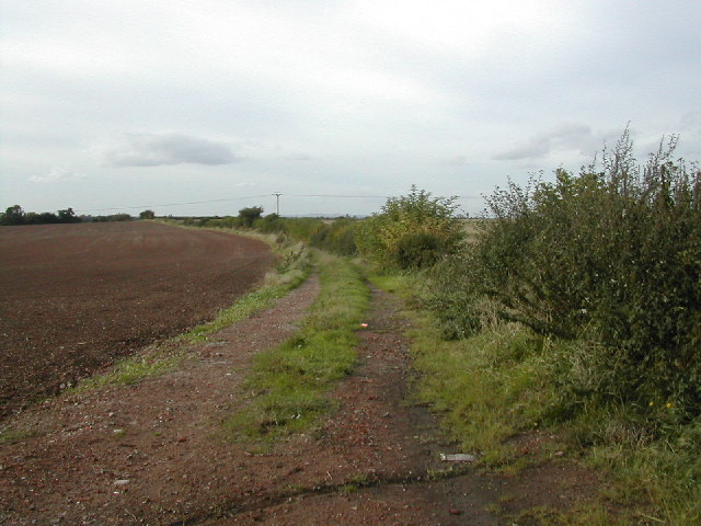 Farm track towards the Trent near newton Solney.