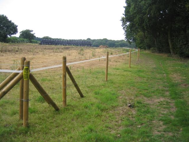 Near Merton Hall Farm