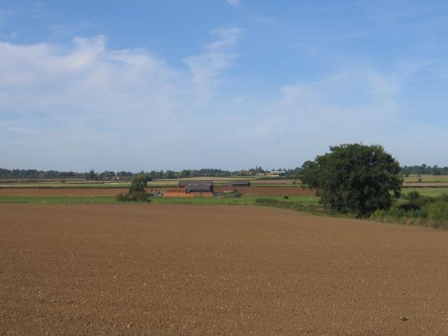Newnham Grounds