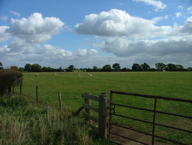 Pasture near Admington