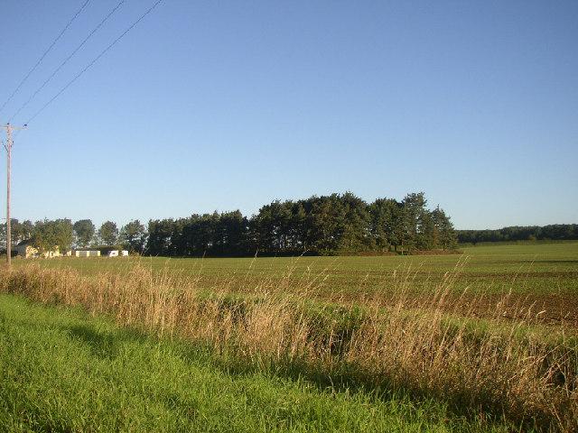 Park Farm Cottages