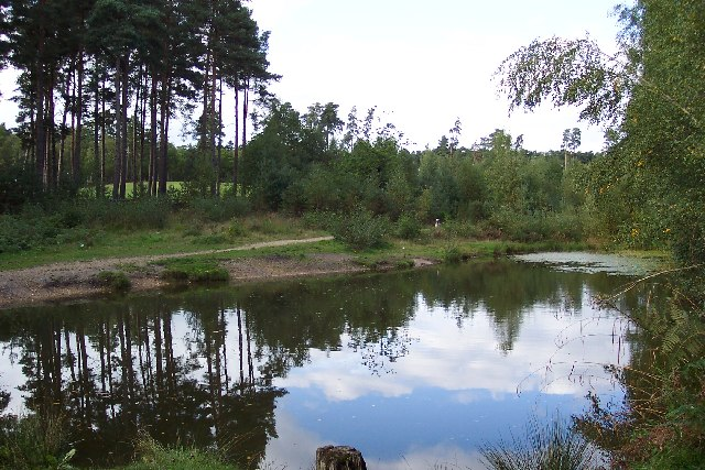 Pond on the Frimley Fuel Allotments